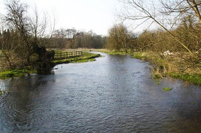 The River Chess needs more people to be involved.