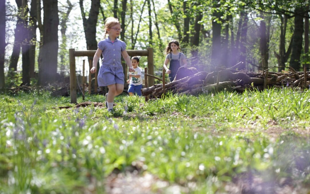 Nature Walks for children