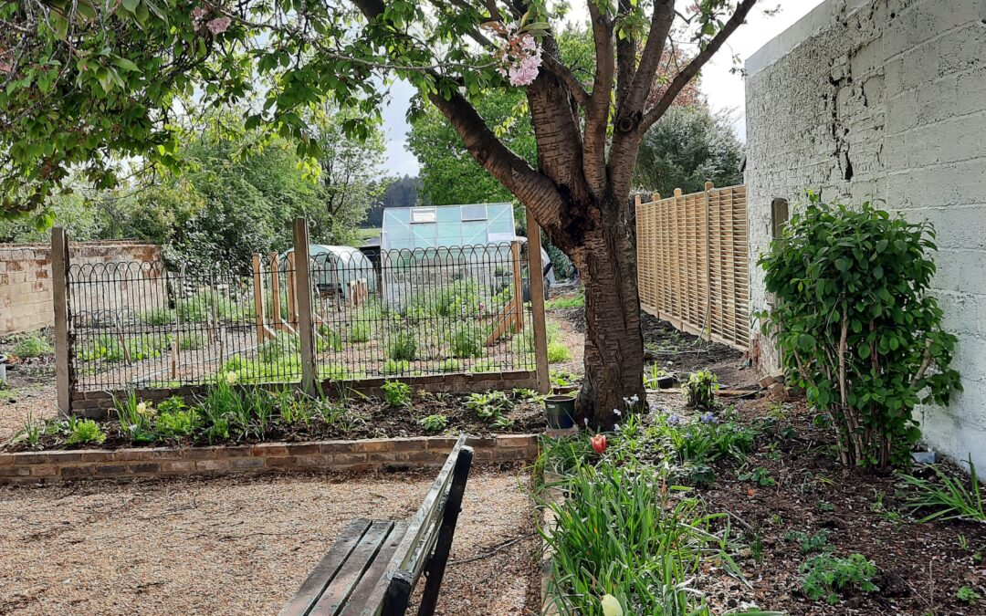 Open morning at the new community garden