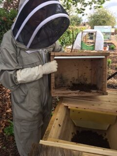 New Bees on the block in Sarratt, just in the nick of time for World Bee Day – 20th May!